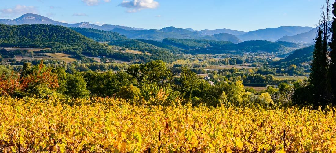 Autumn in Provence