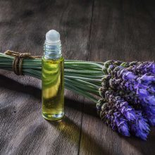 The secrets of lavender